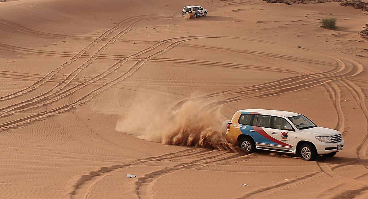 Desert Safari med Night Tour.